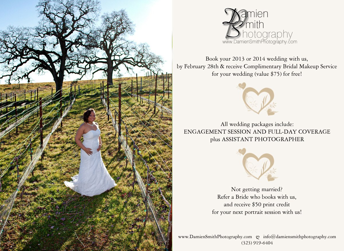 Valentine's Day Wedding Booking Special